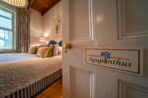 Farmhouse Room : Agapanthus